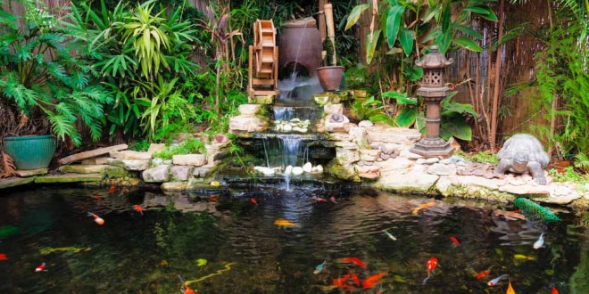 - 42 Incredibly Beautiful Backyard Ponds For Your Inspiration