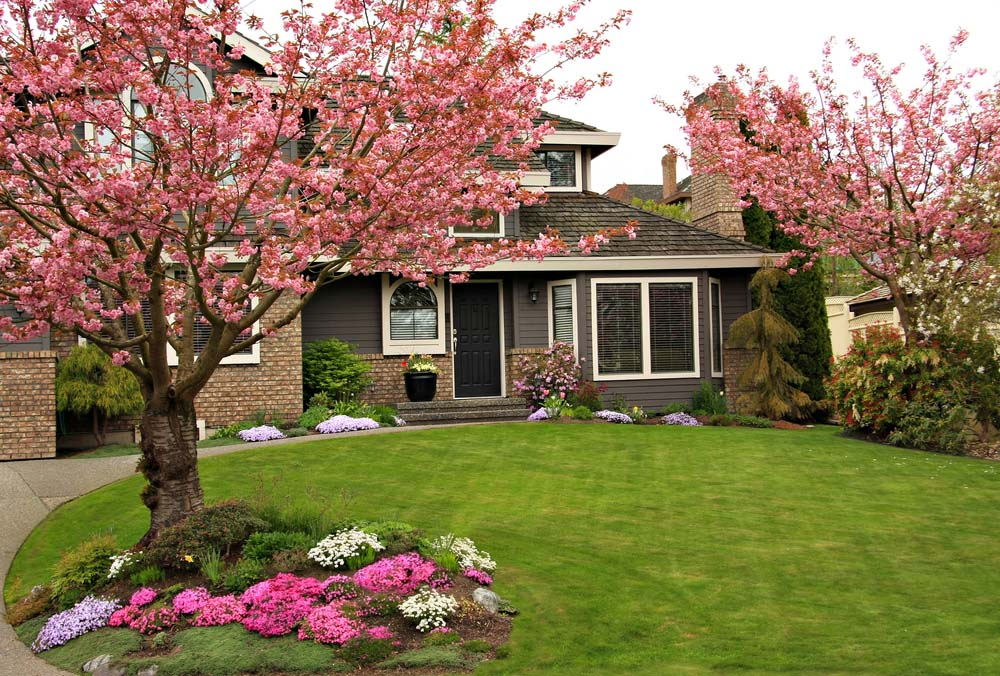 37 inspiring front yard landscaping ideas page 2 of 3 for Front lawn plant ideas